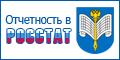 Отчетность в Росстат